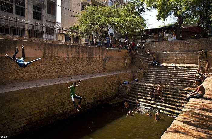 Nhảy xuống hồ nước để làm mát ở New Delhi
