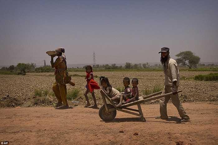 Những cánh đồng nứt nẻ, khô nóng ở ngoại ô New Delhi