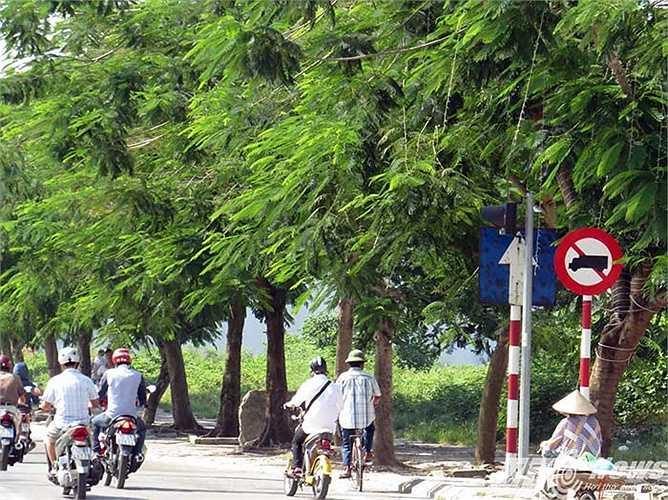 Tương tự như vậy, tại ngã tư đèn tín hiệu giao thông trên đường Lê Hồng Phong (gần tòa nhà Khánh Hội), những ngày trước, Đội CSGT, Trật tự Công an quận Ngô Quyền vẫn lập chốt xử lý vi phạm giao thông. Tuy nhiên, ngày 29/5 không thấy xuất hiện.