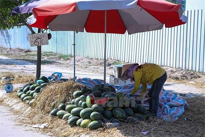 Đều đặn mỗi ngày, chị bán dưa hấu vẫn cố gắng ngồi giữa trời nắng, chiếc ô che không làm dịu đi không khí oi bức, ngột ngạt.