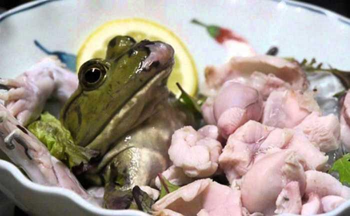 """Đối với nhiều người dân Nhật Bản, món sashimi ếch là một trong những món """"khó nuốt"""" nhất."""