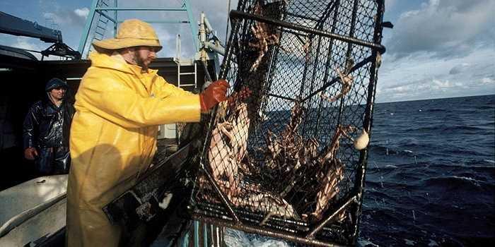 7.Đánh bắt hải sản  Không mấy ngạc nhiên khi công việc này đươc trả tới 60.000 USD bởi nó luôn ẩn chứa những nguy hiểm chết người với những tháng lênh đênh trên biển.
