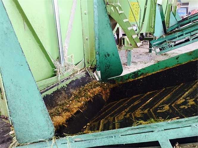 Hỗn hợp thức ăn cho bò sau khi đã được trộn xong, được đưa ra theo dây chuyền
