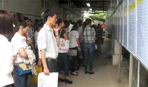 cử nhân thất nghiệp