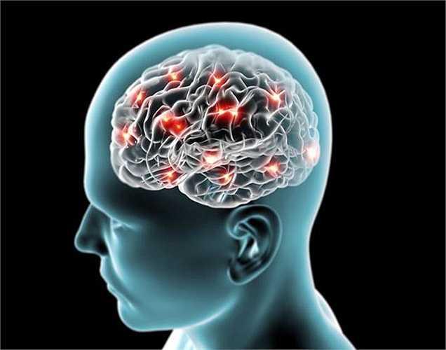 Nghiên cứu cho thấy rằng việc sử dụng rượu mãn tính có thể gây tổn hại các thùy trán của não. Lạm dụng rượu trong một thời gian dài có thể gây giảm kích thước não.