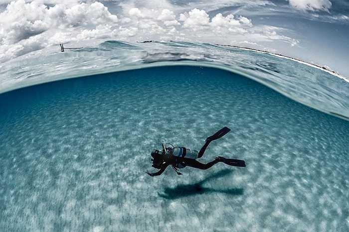 Người thợ lặn nổi bật giữa màu nước xanh, cát trắng, ánh nắng mặt trời tỏa sáng khắp mặt biển