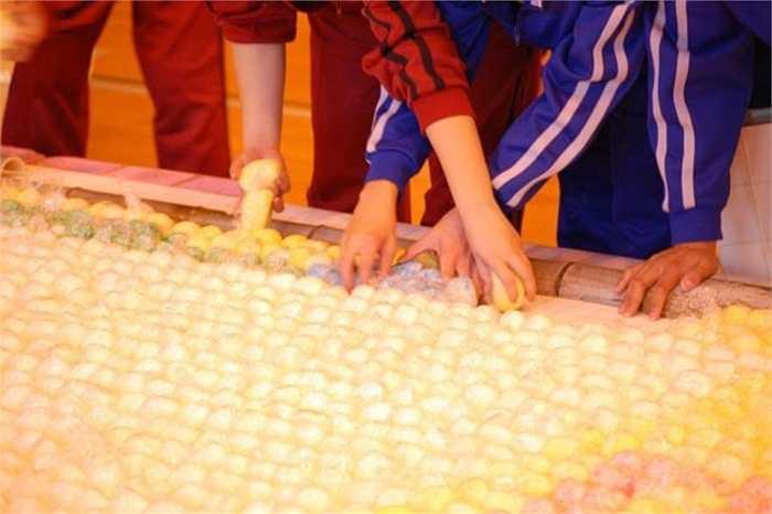 Bức tranh gạo lớn nhất thế giới. Kỷ lục này được thực hiện bởi một tổ chức ở Trung Quốc. Diện tích của bức tranh gạo này lên tới gần 1.800m2