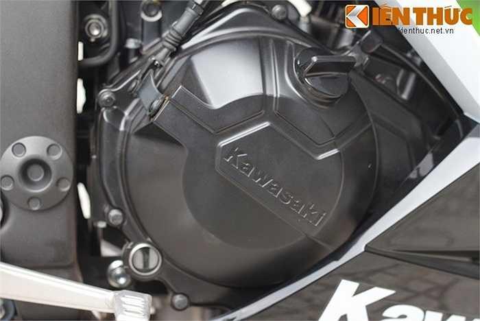 Ninja 300 được trang bị động cơ 296 cc cho công suất 39 mã lực, mô-men xoắn cực đại 29 Nm, có phun xăng điện tử và hộp số 6 cấp.