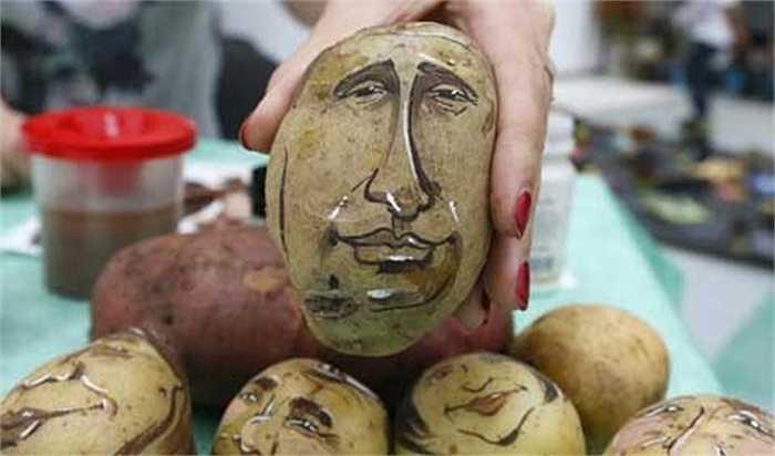 Họa sĩ hoạt hình người Nga Daria Chebunina giới thiệu củ khoai tây có hình Tổng thống Putin, tại một hội chợ thực phẩm ở Krasnoyarsk