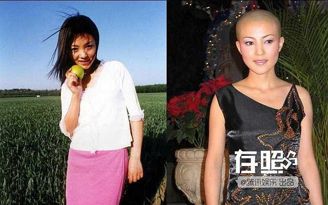 Năm 2004, bạn trai Tạ Vũ Hân - Trần Tuấn Lâm - bị cảnh sát bắt giữ. Đến lúc này, cảnh sát mới phát hiện, tên này là tội phạm lẩn trốn 20 năm. Vụ bê bối khiến sự nghiệp cô lao đao. Năm 2006, không chịu nổi áp lực dư luận, cô rút lui khỏi showbiz và thậm chí còn cạo trọc đầu.