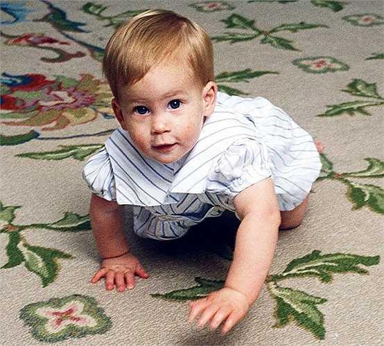 1.Hoàng tử Harry (Anh) là là con trai út của Charles, Hoàng thân xứ Wales và Diana, Công nương xứ Wales, và là cháu thứ 4 của Nữ hoàng Elizabeth II.