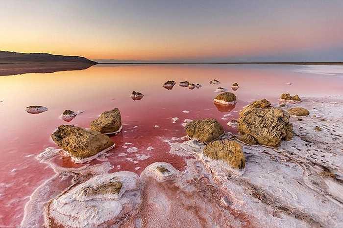 Salar de Uyuni khi bình thường có màu trắng của muối nhưng có khi biến đổi thành màu đỏ