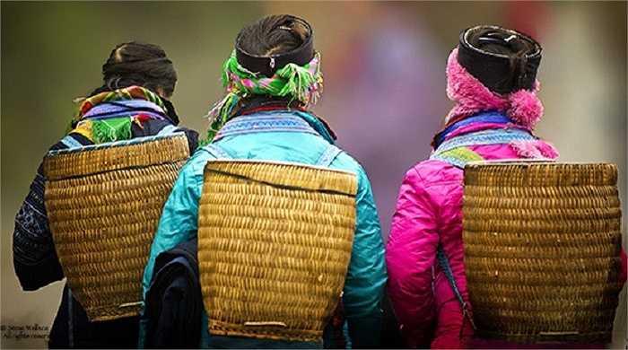 Những cô gái dân tộc ở Sapa