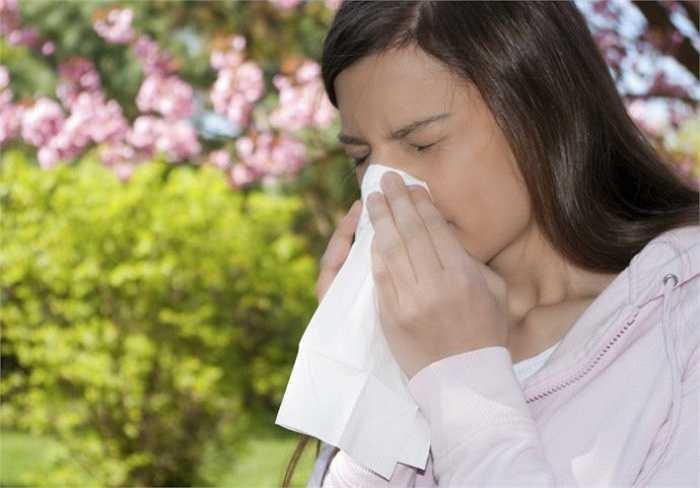 9. Đặc biệt, trong mùa hè các trường hợp dị ứng càng tăng cao do không khí oi bức và ngột ngạt.