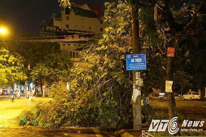Sau cơn dông lốc kinh hoàng, cây xanh gãy đổ đè vào người đi đường khiến cho nhiều nạn nhân đã phải nhập viện cấp cứu.