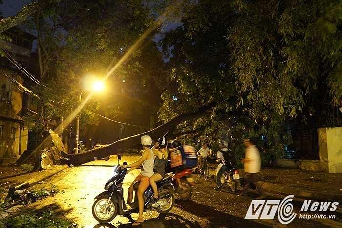 Vì cơn giông kéo đến bất ngờ với sức gió giật mạnh, nhiều con đường đã mất điện hoàn toàn, oằn mình dưới những thân cây đổ gục.
