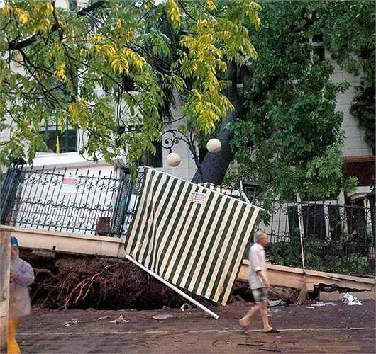 Cây đổ kéo theo cả móng nhà bị hất văng