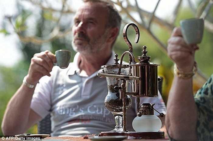Ở vùng Tam Giác Vàng thuộc miền bắc Thái Lan, những đàn voi được chăm sóc, nuôi dưỡng đặc biệt để 'thải' ra một trong những loại cà phê tinh túy, đắt đỏ nhất thế giới, cà phê Black Ivory.