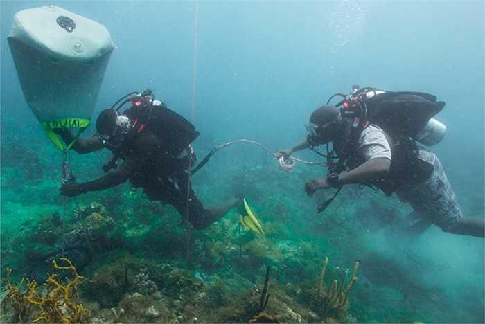 Các học viên luyện tập khả năng di chuyển vật dưới đáy biển
