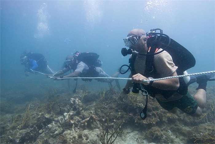 Luyện tập rà soát dưới đáy biển