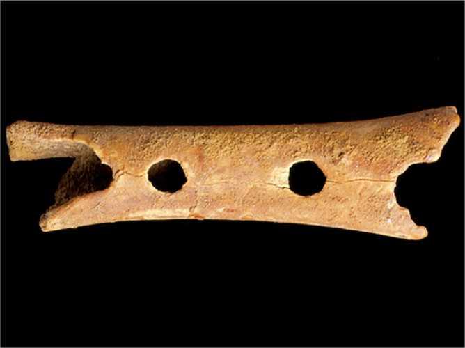 Nhạc cụ lâu đời nhất có tuổi thọ 40.000 năm tuổi. Đó là chiếc sáo xương được phát hiện ở hang động Hohle Fels, miền Nam nước Đức. Theo các nhà nghiên cứu, nhạc cụ này là từ xương.