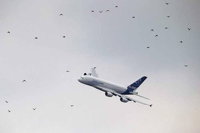 Chiếc Airbus 380 bay lượn trên bầu trời Paris