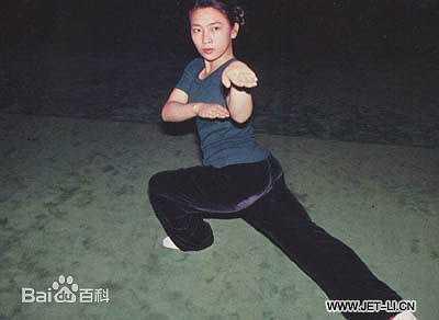 Hiện tại, Hoàng Thu Yến là chuyên gia thẩm mỹ. Năm 2005, cô tái hôn với doanh nhân họ Vương, người Sơn Đông.