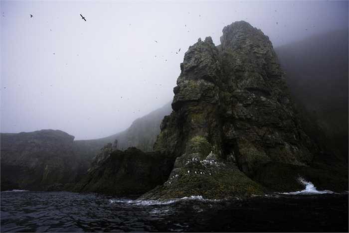 Đảo Bjørnøya. Hòn đảo gần như là cực Bắc của châu Âu. Vị trí xa xôi hẻo lánh và địa hình của nó không hề bằng phẳng với các vách đá cao, dựng đứng. Ngoài ra, vụ đắm tàu ngầm Komsomolets của Xô-viết cũng khiến gây ảnh hưởng tới môi trường của khu vực này