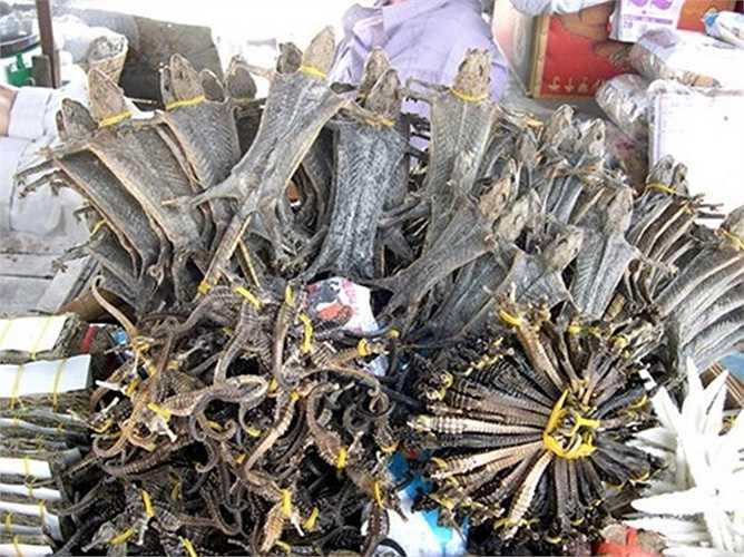 Thằn lằn sống được đem xẻ thịt phơi khô, bán rất được giá. Trung bình mỗi con thằn lằn khô được bán với giá 50.000 - 60.000 đồng.