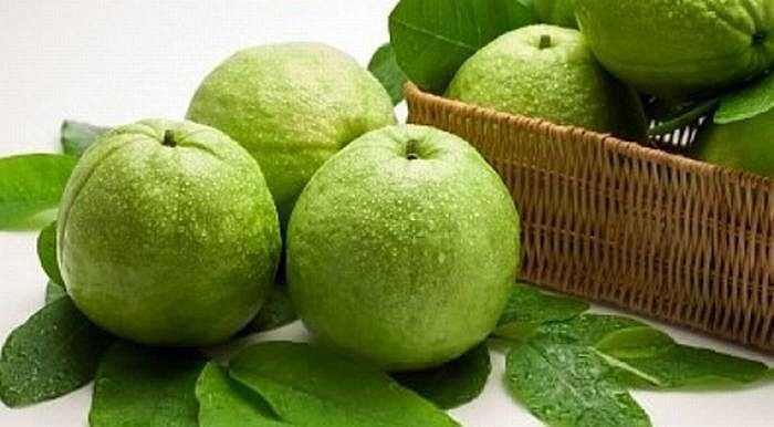 Ổi chứa nhiều vitamin A, B, C mà không có đường, nguồn cung cấp phong phú chất sắt, canxi và phốt pho giúp răng chắc khỏe.