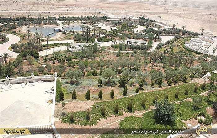 Nhìn từ trên cao, cung điện Mozed nằm nổi bật giữa vùng sa mạc rộng lớn của Syria.