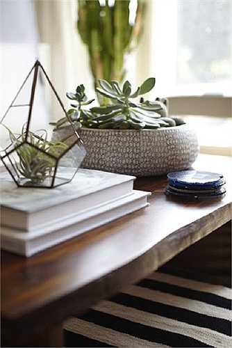 Chậu cảnh mini  Những chiếc chậu cảnh xinh xắn như thế này hoàn toàn có thể được dùng để trang trí cho chiếc bàn phòng khách. Hãy lựa chọn những loại cây mọng nước (ví dụ như hoa đá) hoặc bình cảnh có thiết kế độc đáo để cho chiếc bàn thêm độc đáo.