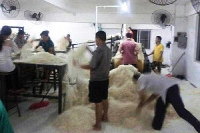 Hồi tháng 10 năm ngoái, dư luận cũng được một phen dậy sóng khi những hình ảnh ghi lại cảnh người ta dẫm đạp lên mì trong một xưởng sản xuất tồi tàn được đăng tải trên mạng.
