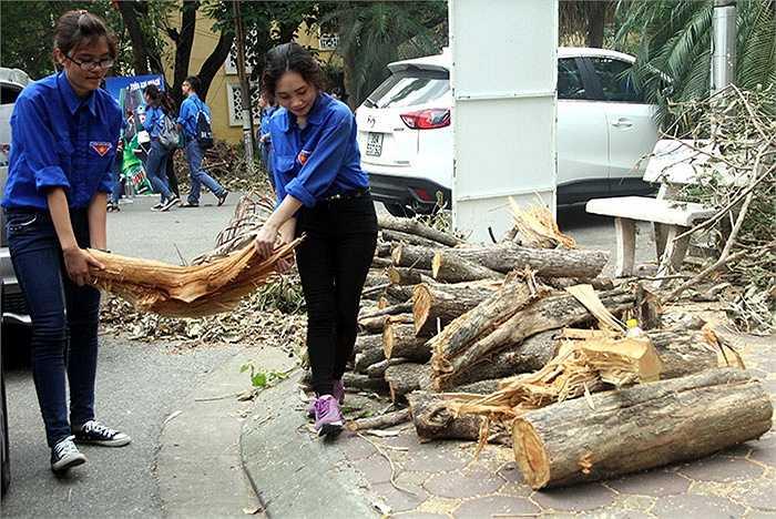 Ngay sau lễ ra quân, các bạn sinh viên tình nguyện của Đại học Kinh tế Quốc dân đã bắt tay ngay vào việc dọn dẹp lại khu vực sân trường do hậu quả của trận gió lốc ngày 13/6