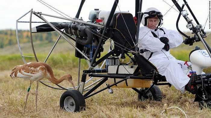 Tổng thống Nga trên chiếc tàu lượn, một hình ảnh trong chiến dịch 'Flight of Hope' (chuyến bay hy vọng) nhằm bảo vệ các loài chim quý hiếm