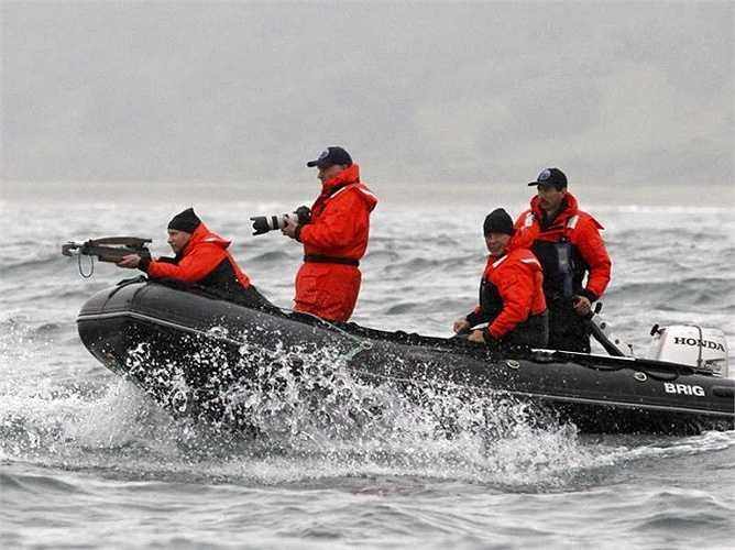 Ông Putin dùng nỏ nhắm bắn cá voi để lấy da chúng làm thí nghiệm nghiên cứu tại vịnh Olga
