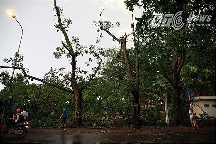 Khoảng 17 giờ chiều ngày 13/6, một cơn mưa giông kèm theo gió giật mạnh xảy ra trên địa bàn TP. Hà Nội khiến 2 người thiệt mạng, hơn 10 người khác bị thương. Trận mưa giông còn khiến hàng trăm cây xanh bị ngã đổ, nhiều nhà cửa bị tốc mái, cùng với nhiều phương tiện ô tô, xe máy bị cây đổ ngã đè vào.