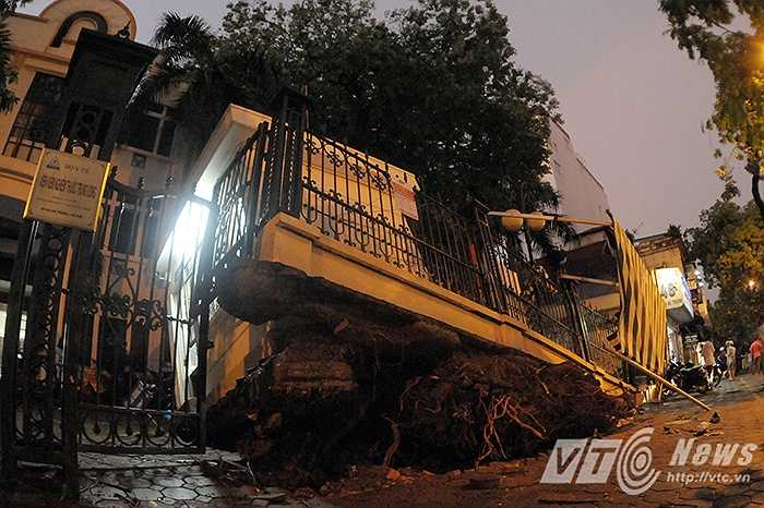 Cột điện bị gãy đổ trên phố Phạm Ngọc Thạch (Đống Đa, Hà Nội) khiến giao thông qua đây bị ùn tắc nghiêm trọng.