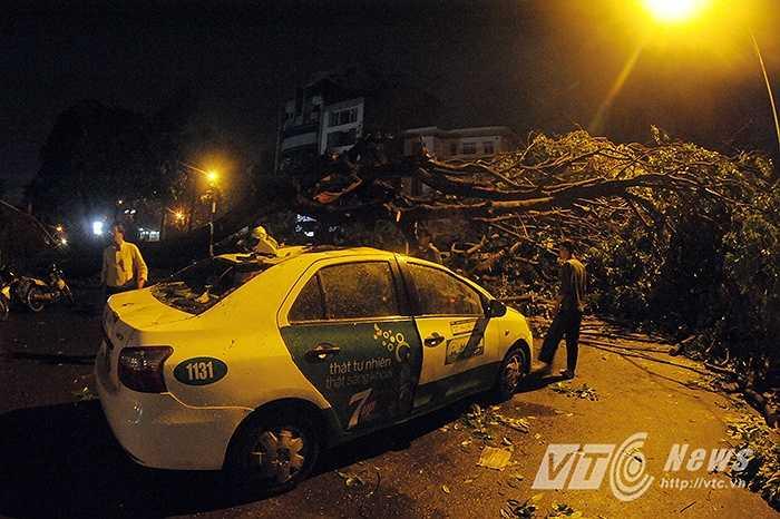 Tại ngã tư Quang Trung - Nguyễn Du (Hai Bà Trưng, Hà Nội), nhiều cây lớn cùng lúc đổ ập xuống 1 taxi, 1 ô tô 7 chỗ và nhiều xe máy khiến 1 người tử vong.