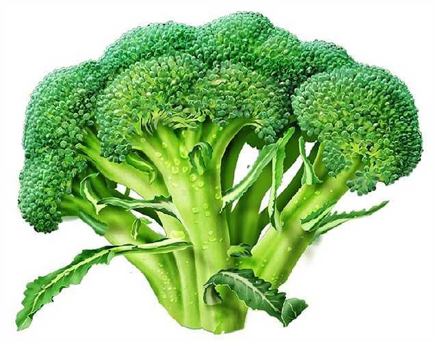 Hai trong số các chất dinh dưỡng cần thiết nhất giúp cho xương của bạn là Vitamin C và Vitamin K. Cách gì tốt hơn để có được những chất dinh dưỡng này hơn bằng cách ăn bông cải xanh? Một cây bông cải xanh với kích thước trung bình là đủ để cung cấp toàn bộ của bạn vitamin K bạn cần trong một ngày, cũng như 200 phần trăm lượng vitamin