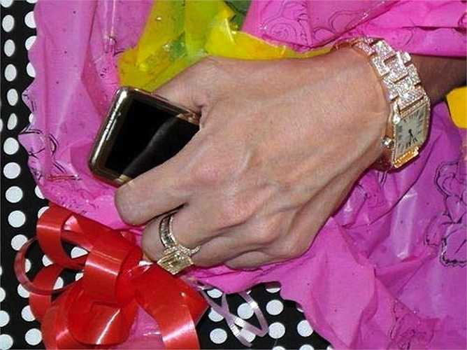 Đàm Vĩnh Hưng còn có thú sưu tập nhẫn và đồng hồ kim cương có giá bạc tỷ.