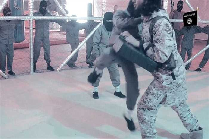 Những chiến binh nhí phải đấu với chỉ huy trước khi hạ gục nhau trong lồng sắt