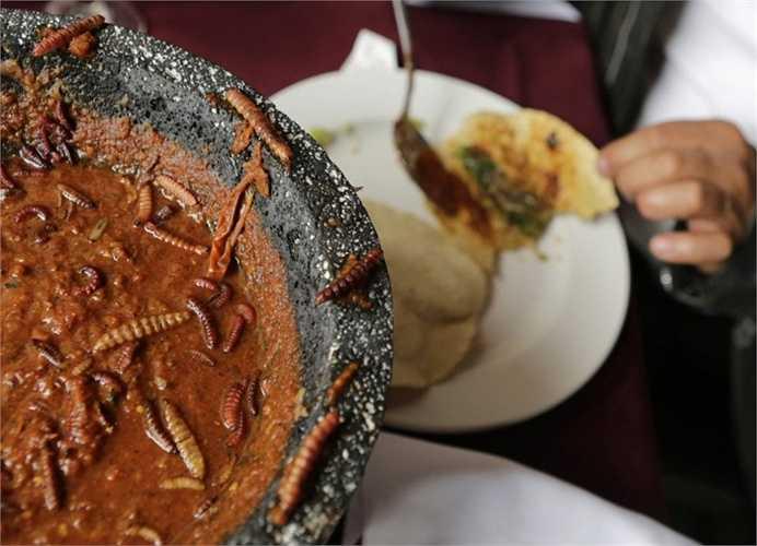 Người Mexico khá coi trọng giá trị dinh dưỡng của côn trùng, đặc biệt là những con sâu. Trong ảnh, người đàn ông đang dùng món bánh taco với những chú sâu béo ngậy