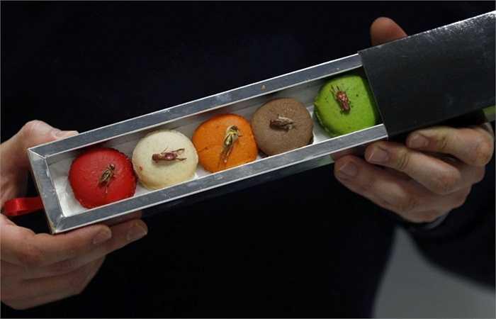 Micronutris - là công ty độc quyền tại châu Âu sản xuất món bánh hạnh nhân ăn kèm với những loại côn trùng sấy khô