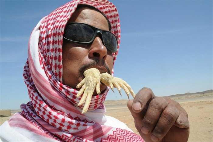 Tại Tabuk, Ả Rập Xê-út, các món ăn từ loài thằn lằn Uromastyx được phục vụ rất nhiều và chính là đặc sản của vùng này