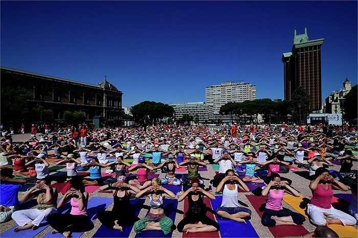 Tập yoga ở Quảng trường Colon ở thành phố Madrid
