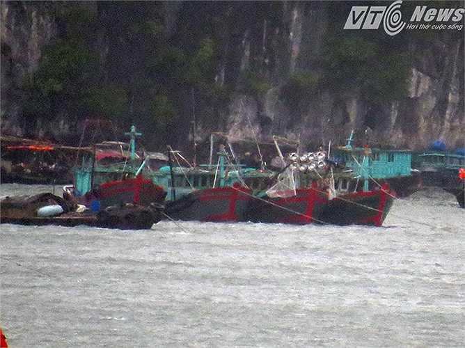 Tại khu vực bờ bao biển Vịnh Hạ Long, các phương tiện đánh bắt thủy hải sản, các tàu thuyền khác đã được neo đậu an toàn trong vịnh.