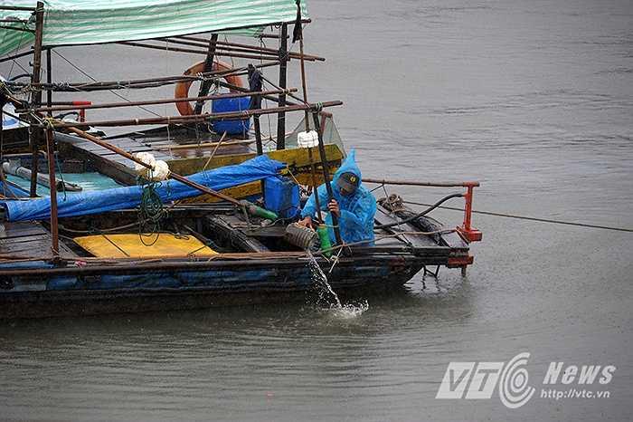 Ngư dân cố gắng kiếm tra lại tàu thuyền tại bãi đậu.