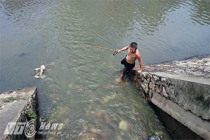 Nhiều người thậm chí còn chui hẳn xuống cống để bắt cá.