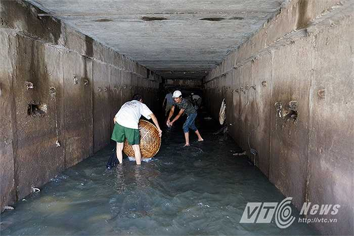 Trong miệng cống thoát nước có đến hàng chục người cùng tham gia bắt cá.